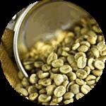 Экстракт зеленого кофе присутствует в диетонусе