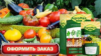 Купить удобрение агромакс