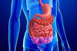 Гепарео для печени мягко действует на все органы человека