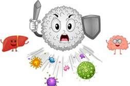 Капсулы Gelminex укрепляют иммунитет.