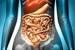 С препаратом Nikotinof идет детоксикация организма.
