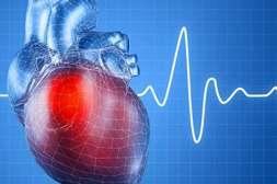 Эффект Аллимакс в поддержке работы сердца.